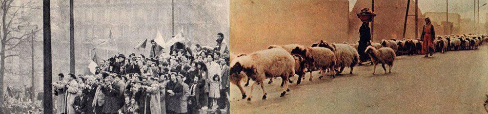 004 irinavale - Колхозниці у Голлівуді: Ілюстраторка Ірина Вале іронізує над радянськими фото - Заборона