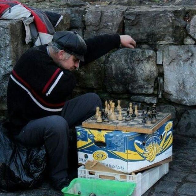 26185340 750901085034511 8657188754743623680 n - «Сука-життя»: Жителі вулиць Києва в Instagram - Заборона
