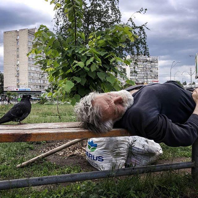 31939208 177248612989416 130139592127938560 n - «Сука-життя»: Жителі вулиць Києва в Instagram - Заборона