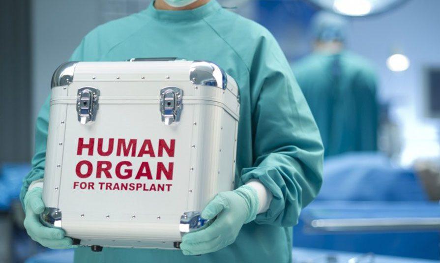 15122018 news 1 2 - Призначене для трансплантації серце забули у літаку в Сіетлі. Пасажирський авіарейс розвернули на півдорозі - Заборона