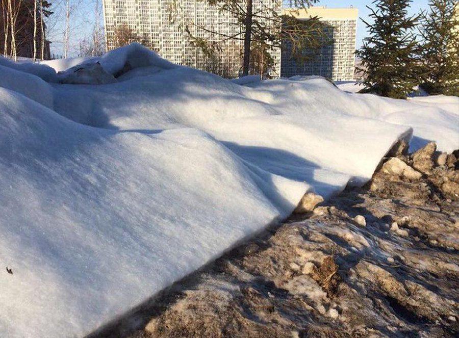 snow 4 - Пенсії від Гітлера, синтепоновий сніг для Путіна, небесні фалоси від нудьги, та інші ШЗХ тижня - Заборона
