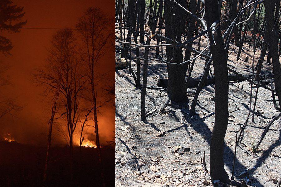 3 photo cristofer jeschke - <b>Убегаем с планеты.</b> Изменения климата вынуждают миллионы людей искать новый дом - Заборона