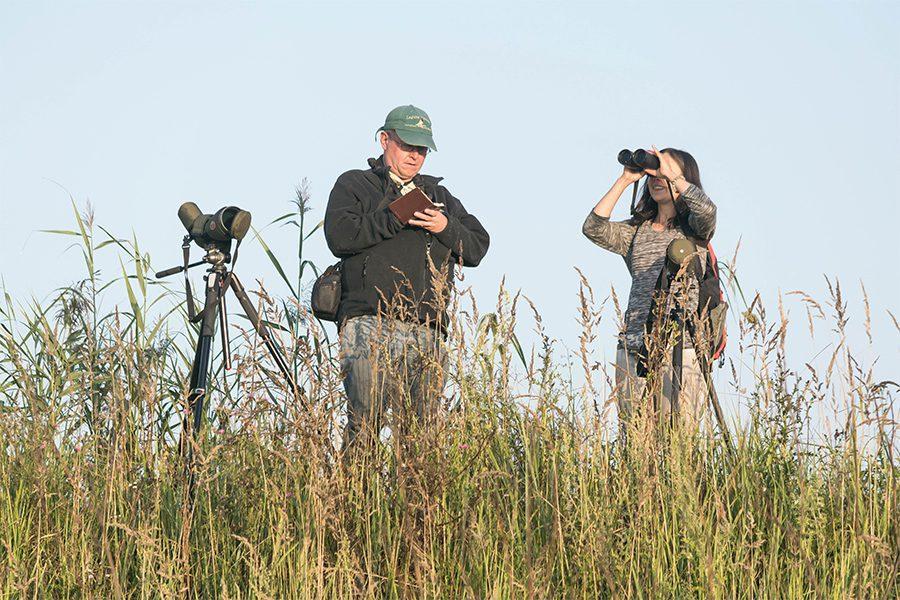 3 foto yurij fomin - <b>Дивитися на птахів.</b> В Україні бьордвочери допомагають зберегти рідкісні види - Заборона