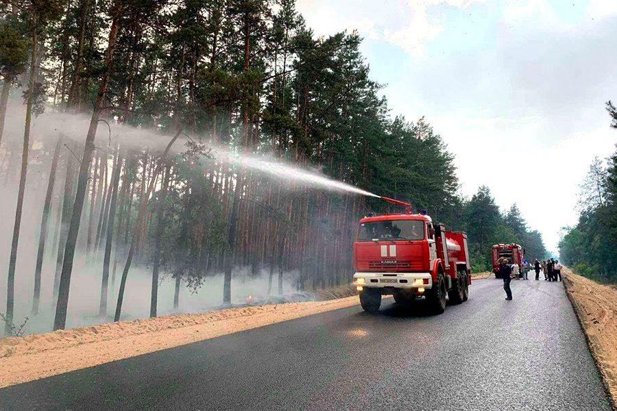 foto dsns ukrayiny 1 - <b>В Луганской области несколько дней горят леса.</b> Вместе с пострадавшим от пожара рассказываем, что произошло - Заборона