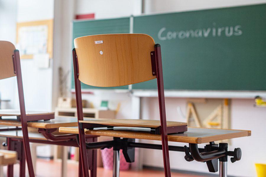 dpa 1 - <b>Школа дома.</b> Старшеклассники рассказывают, как пережили карантин и забили на уроки - Заборона