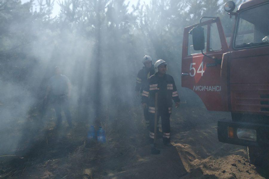 6 4 - <b>«Кому теперь нужна эта пустыня Сахара?»</b> В Луганской области горят леса и села, а волонтеры — тушат - Заборона
