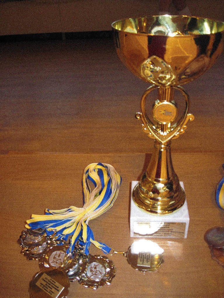 women sport sliusarenko medals - <b>«Если ты профессионалка, то это случайность».</b> Как дискриминируют женщин в спорте - Заборона
