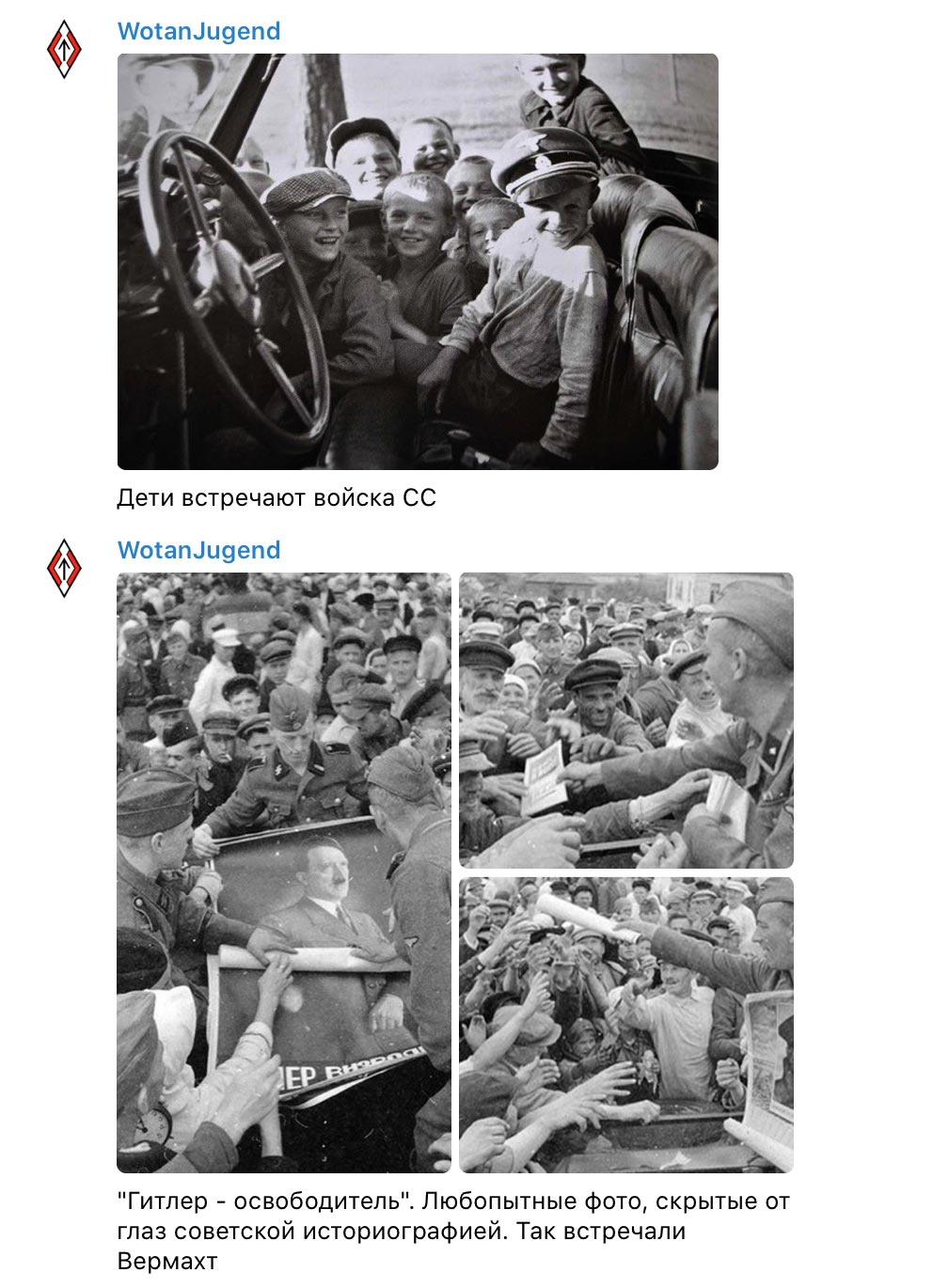 """wotan jugend 04 - <b>""""Literal Terrorism"""" and """"Wotan Youth"""".</b> How the Ultra-Right in Ukraine Use Telegram to Promote Their Ideas - Заборона"""