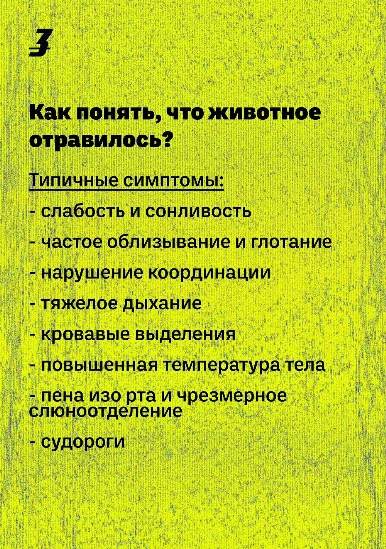 dog hunter ru 01 - <b>Кажется, мою собаку отравили.</b> Что делать? - Заборона