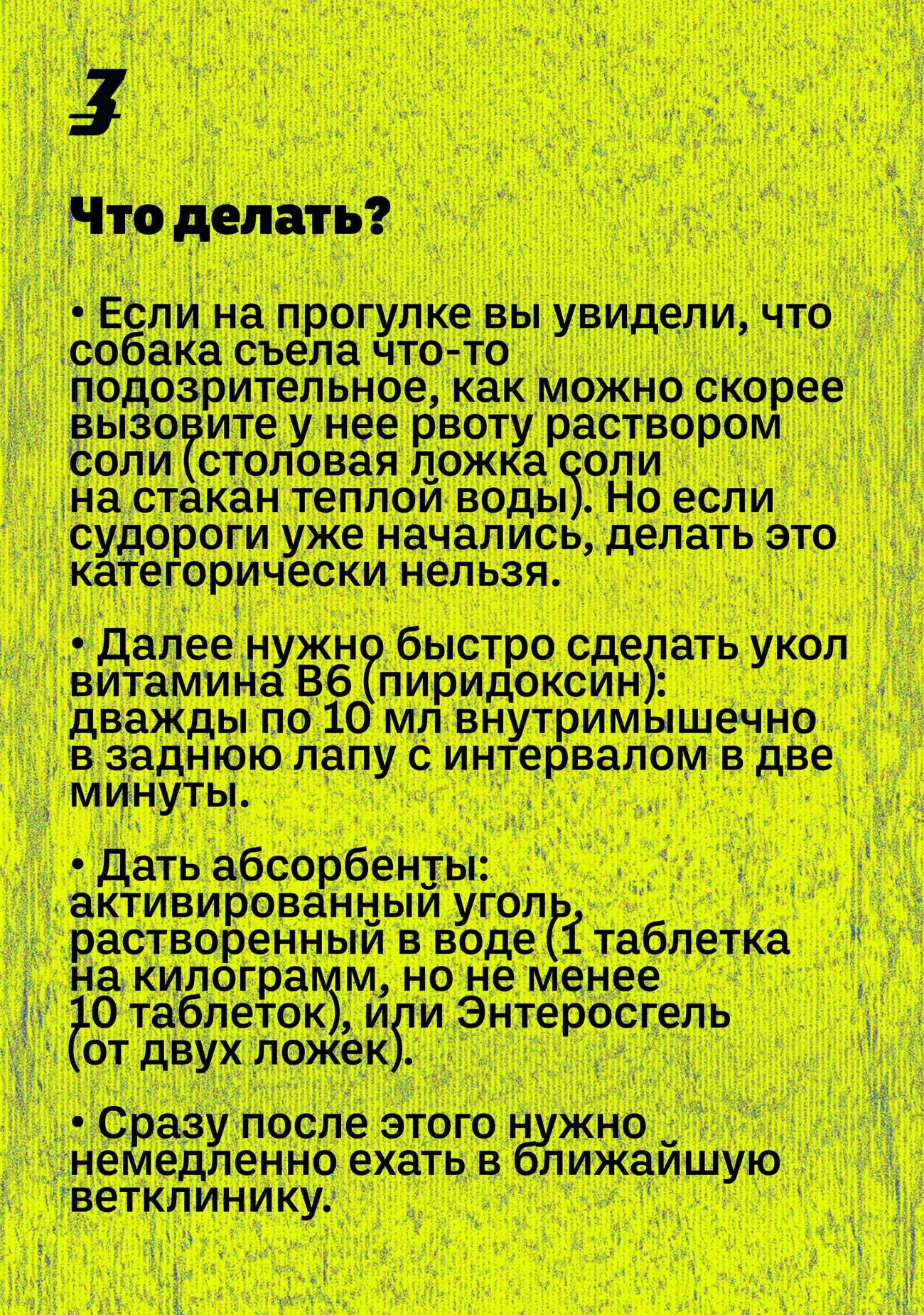 dog hunter ru 03 - <b>Кажется, мою собаку отравили.</b> Что делать? - Заборона