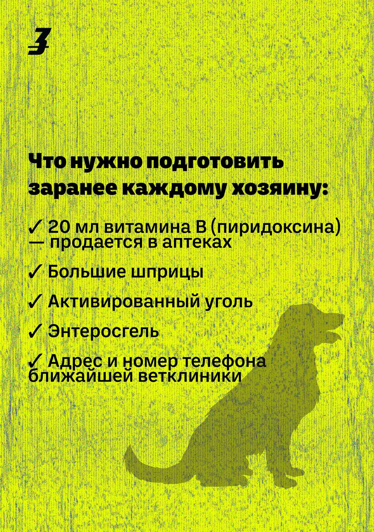dog hunter ru 04 - <b>Кажется, мою собаку отравили.</b> Что делать? - Заборона