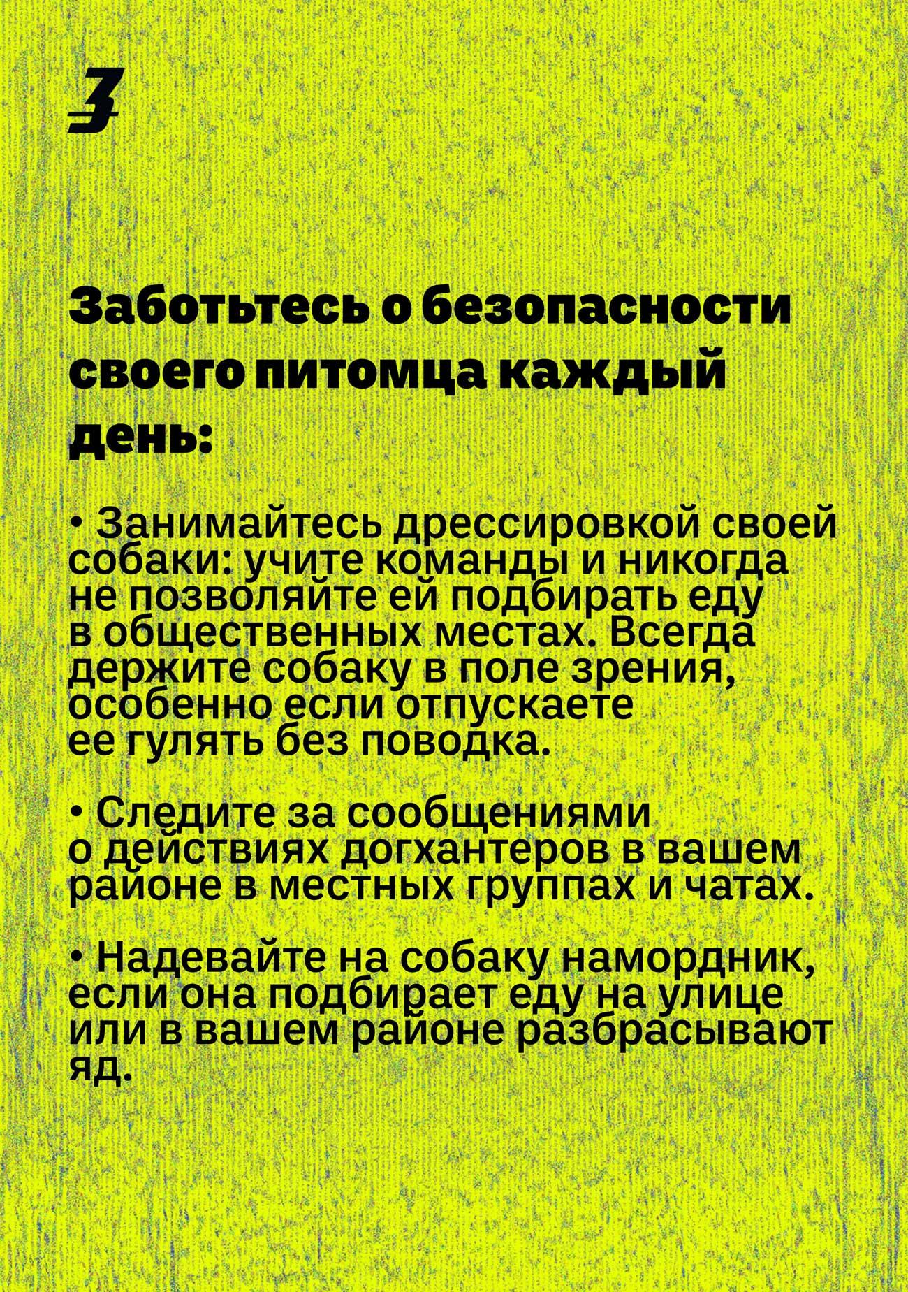 dog hunter ru 05 - <b>Кажется, мою собаку отравили.</b> Что делать? - Заборона