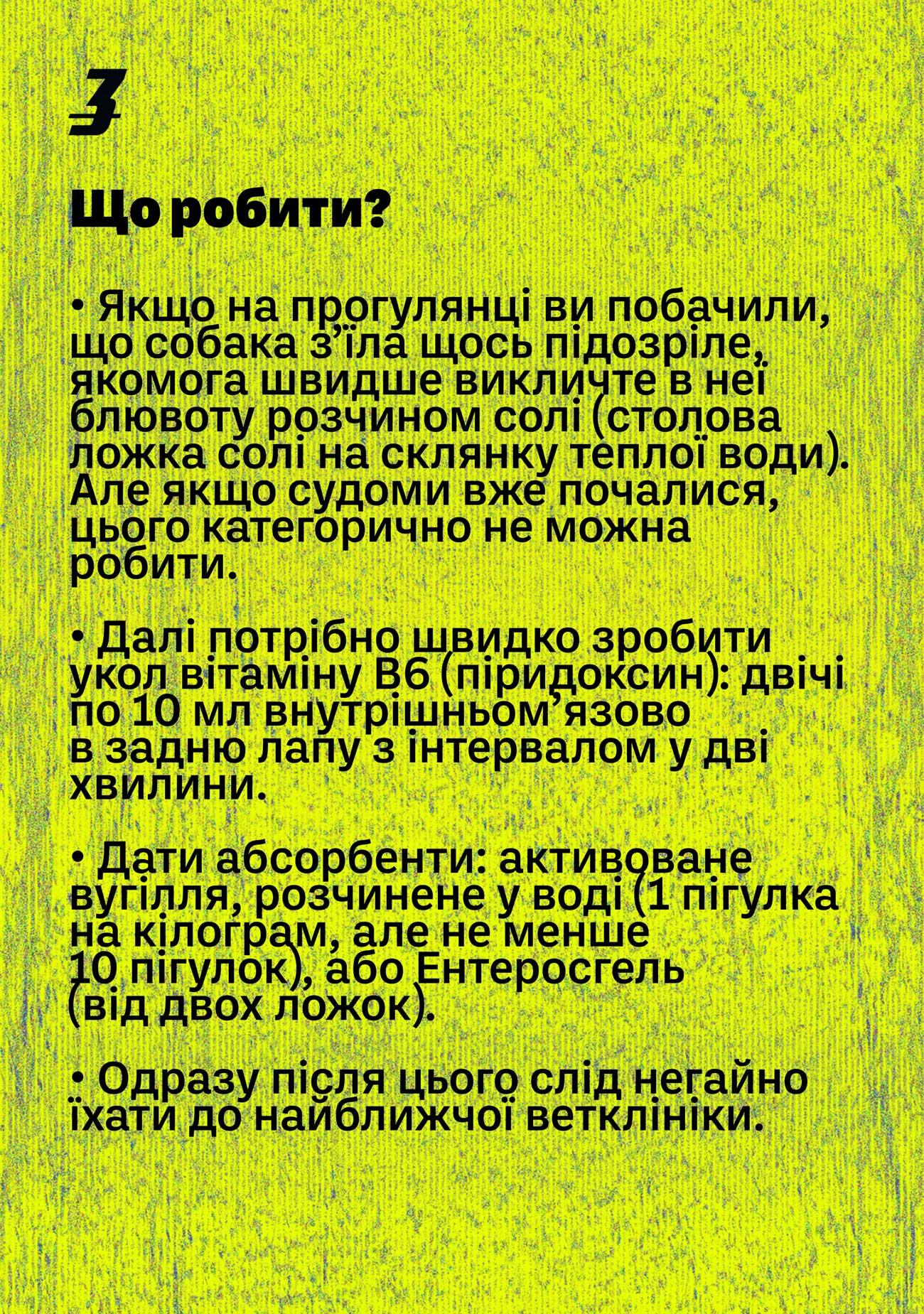 dog hunter ua 05 - <b>Здається, мою собаку отруїли.</b> Що робити? - Заборона