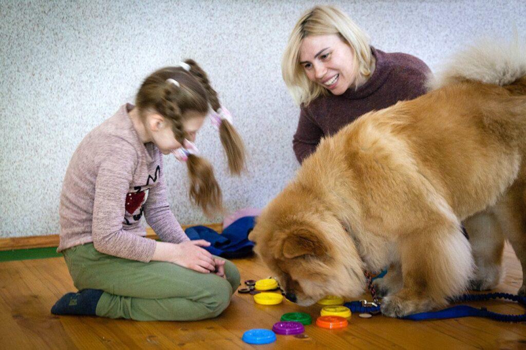 social cynology 1410 1024x683 - <b>Одно сердце на двоих.</b> Как собаки помогают людям с инвалидностью и без - Заборона