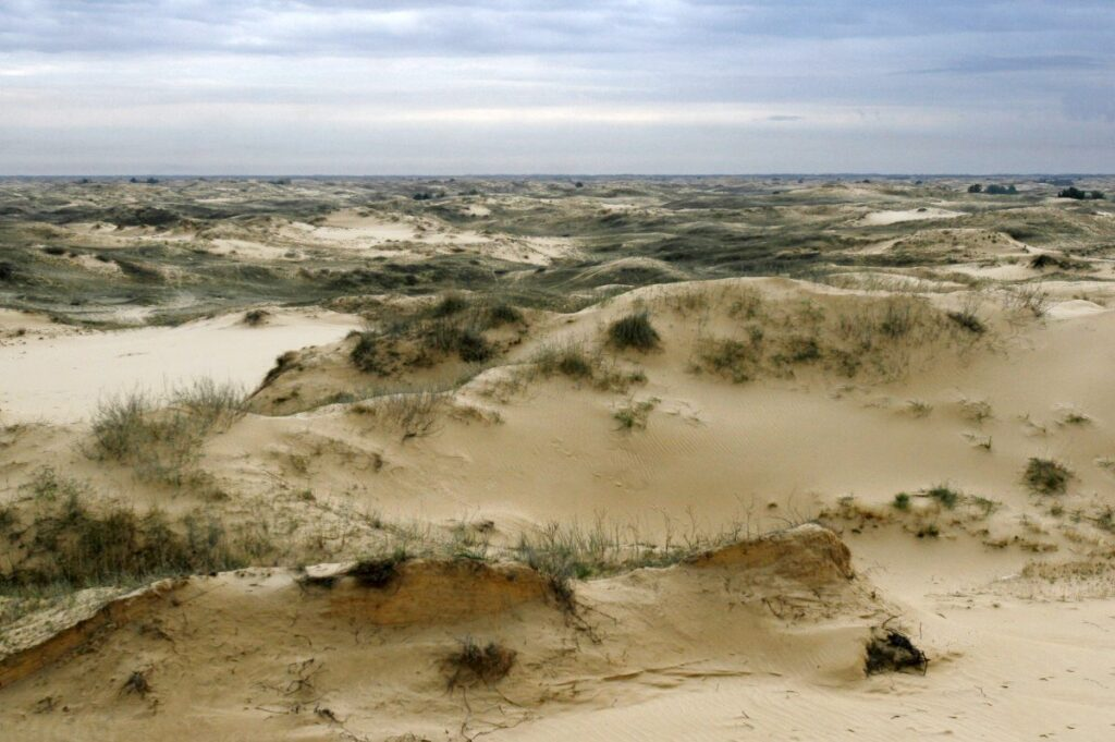 448876 1024x681 - <b>За 30 років третина суші стане пустелею через людей і зміни клімату.</b> Це не омине й Україну - Заборона