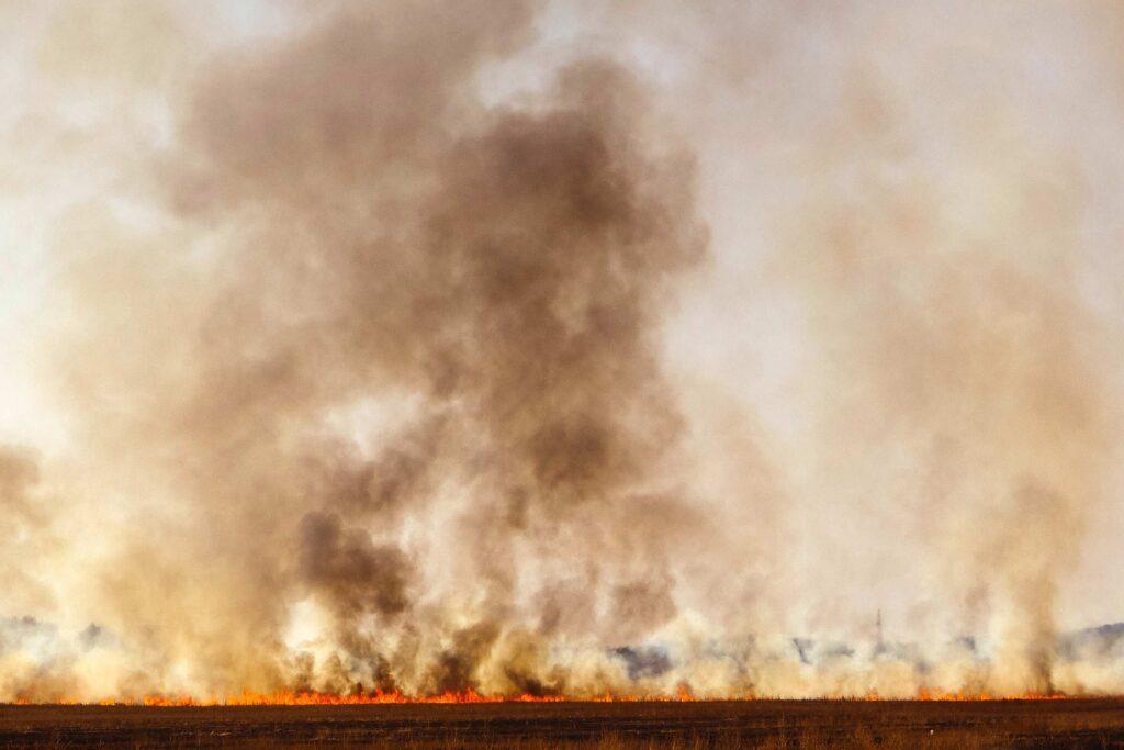 dominik kiss unsplash 1024x683 - <b>За 30 років третина суші стане пустелею через людей і зміни клімату.</b> Це не омине й Україну - Заборона