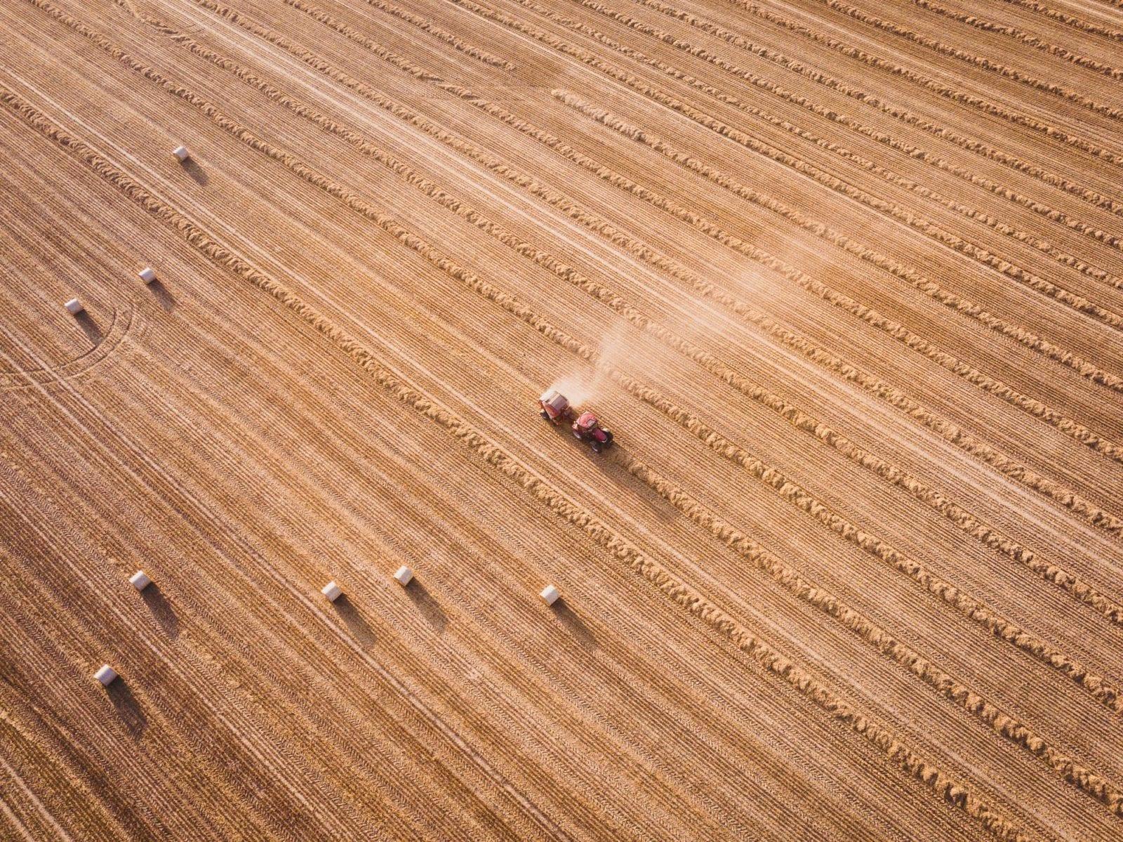 Земельний ринок в Україні: як тепер продавати та купувати землю