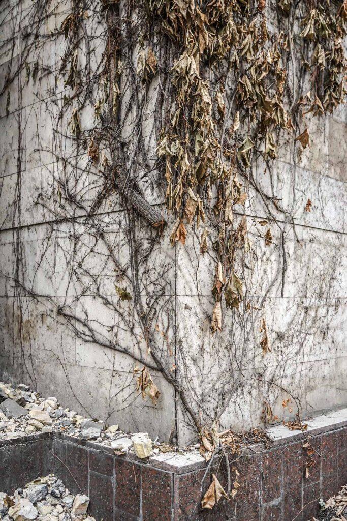 kvity ukrainy dsc08236 683x1024 - <b>Сусіди одного дому.</b> У Києві почали зносити «Квіти України», але місцеві заблокували роботу техніки - Заборона