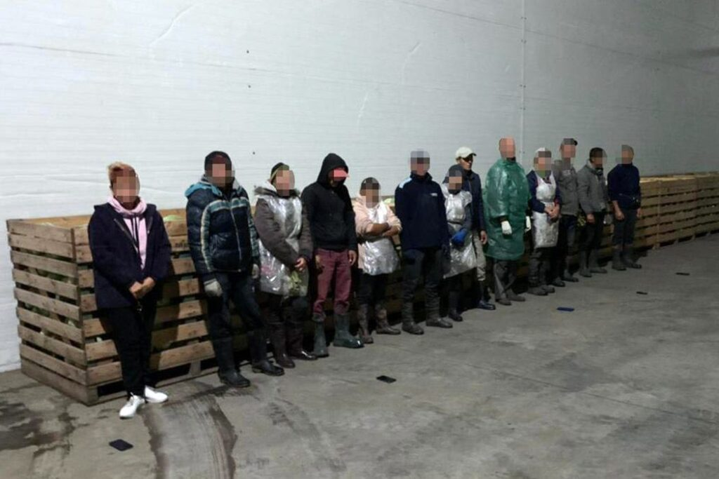 slavery 05 1024x683 - <b>Хотіли роботу — втратили свободу.</b> Як українці потрапляють у трудове рабство та чому ця проблема ширша, ніж здається - Заборона